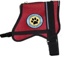 therapy dog vests