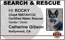 Search Rescue ID Badges