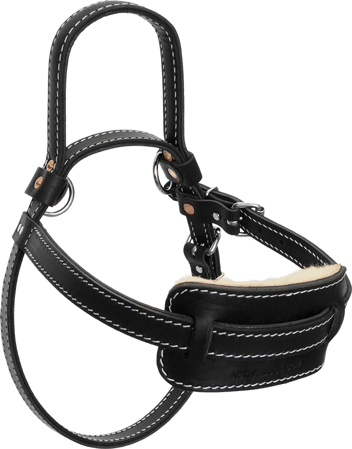 Full on Real Leather Dog Harness
