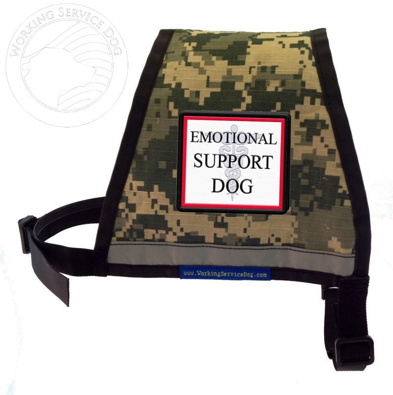 how to get an emotional support dog