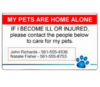 Current image intended for my dog is home alone card printable