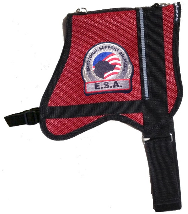Official Premium Mesh Emotional Support Dog Vest With Id Card