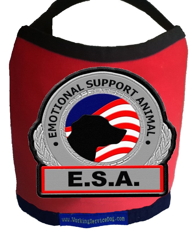 Premium Emotional Support Dog Vest For Smaller Dogs