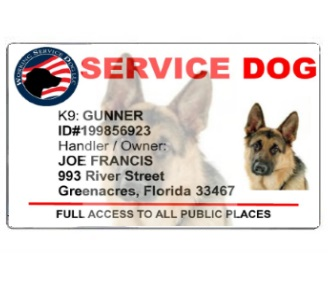 Custom Service Dog Id Card