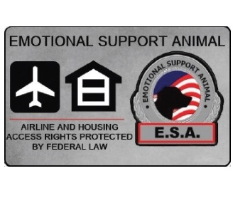 how to buy an emotional support animal