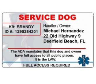 service dog id no photo