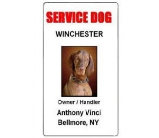 Service Dog PVC ID Badge