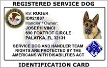 Registered Service Dog ID Card