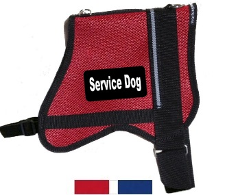 mesh working dog vest