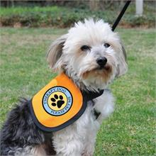Therapy Dog Vest Therapy Dog Vest With 2 Therapy Dog Patches