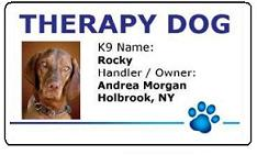 Therapy Dog PVC ID Badg