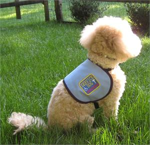 Medium Sized Dogs Service Dog Vest Official Vest For