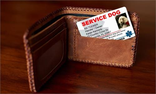 Service Dog ID Cards