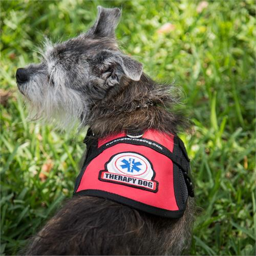therapy dog vests for small dogs
