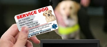 service dog identification cards