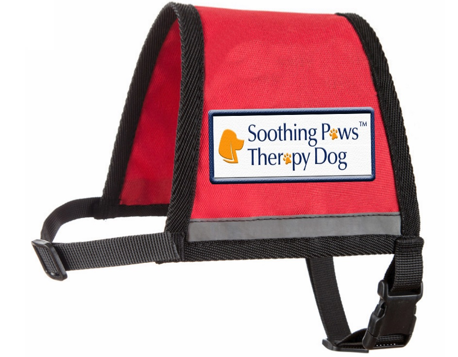 Custom Services for Dog Trainers - service dog vests