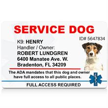 Registered service dog Identification ID card