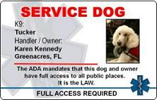 Service Dog Id Badge Template