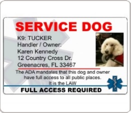 Service dog identification card with dogs photo