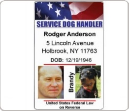 service dog handler identification card with two photos