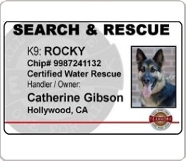 search and rescue identification card with dogs photo