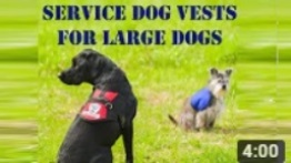 Service Dog Vests for Large Dogs