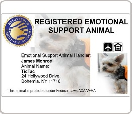 Emotional support dog identification card with dogs photo