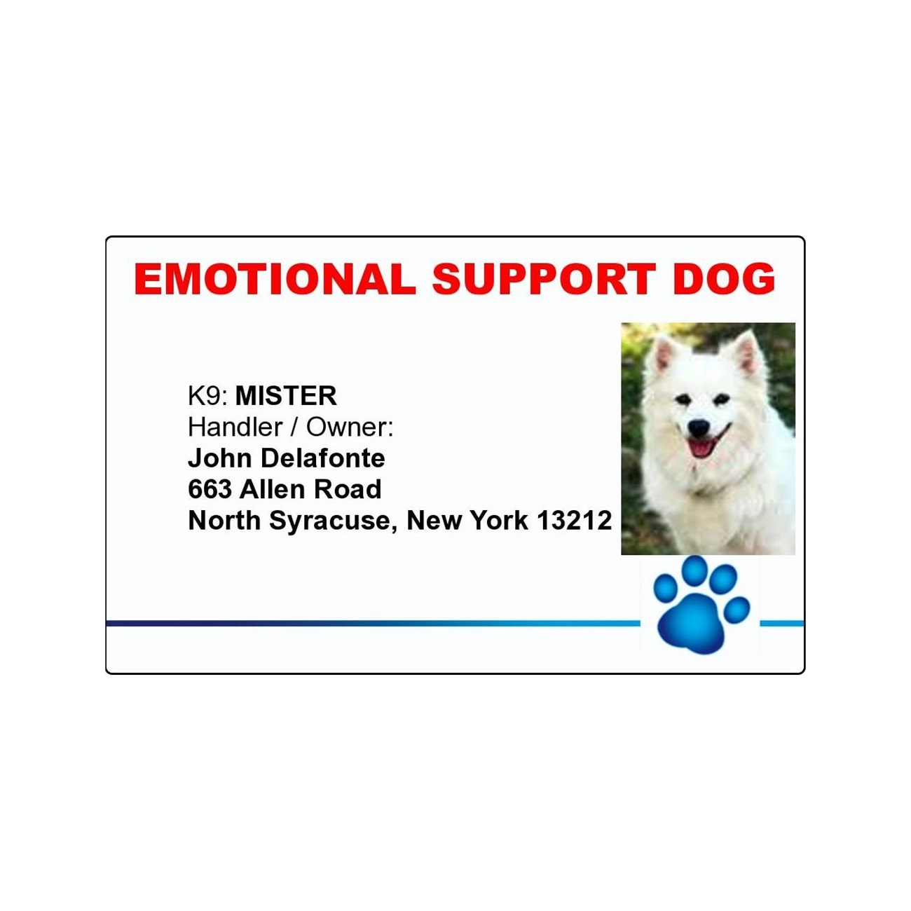 emotional support dog paw print id badge with your dogs photo