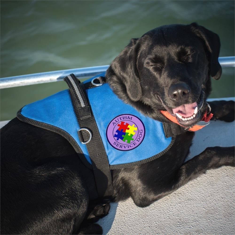 Autism Service Dog | Official Padded