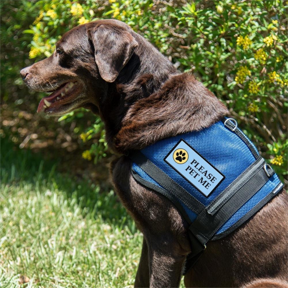 Please Pet Me Dog Vest Patch | Service