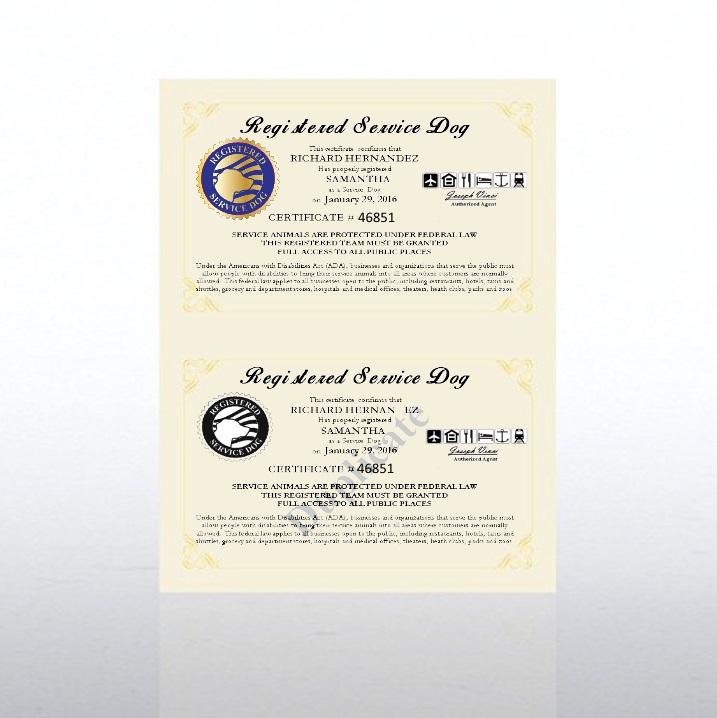 Registered Service Dog Certificate Official Service Dog Paperwork