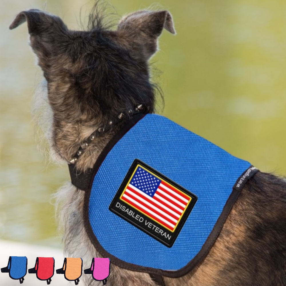 Disabled Veteran Service Dog Patriotic Vest Complete With 2 Patches