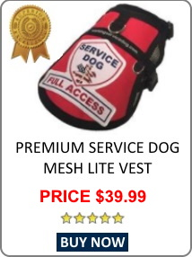 featured service dog vest