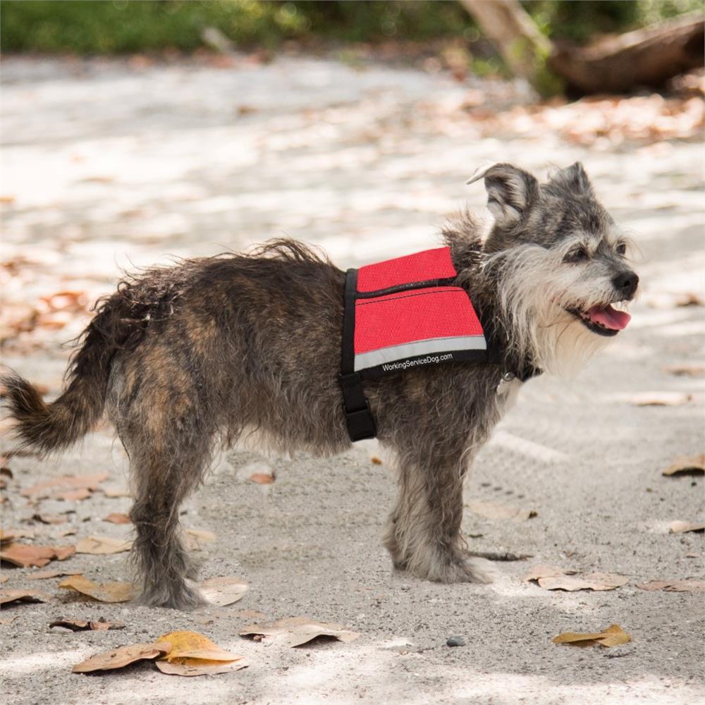 Reflective Service Dog Vest | Includes ID Badge Holder & Zipper Pockets