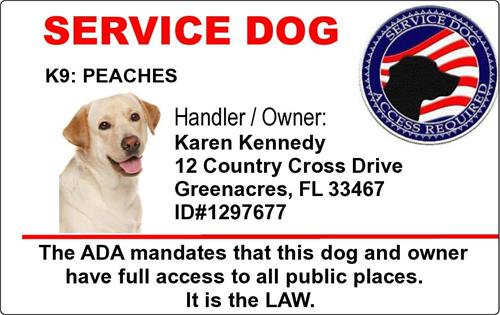 9626dc7c20ca Service Dog PVC ID Badge Tag Custom With Your Dogs Photo