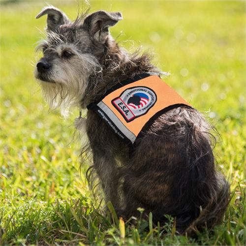 Reflective Emotional Support Dog Vest