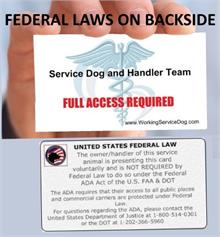 Federal Law Handout Cards
