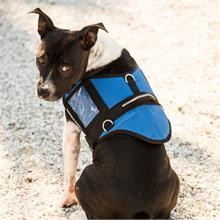 Blue Padded Service Dog Vest