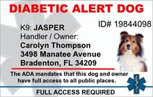 Diabetic Alert Dog PVC ID Badge - 2 Sided - Star of Life