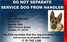 Do Not Seperate Service Dog From Handler Customized ID Card