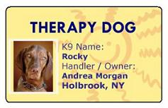 Therapy Dog Sunshine Customized ID Card