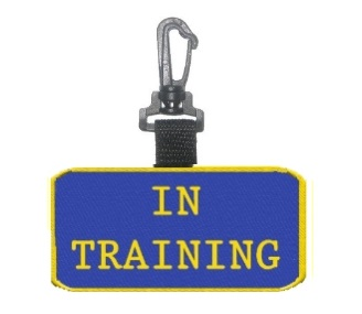 In Training Patch Tag