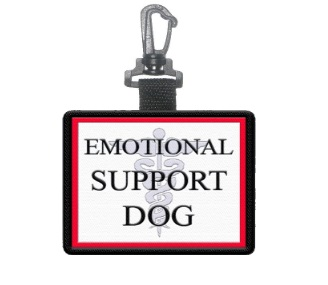 how to make your dog an emotional support dog
