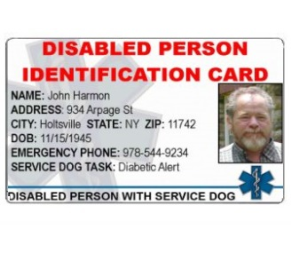 Disabled Person Identification Card