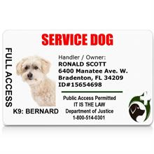 Service Dog ID Card