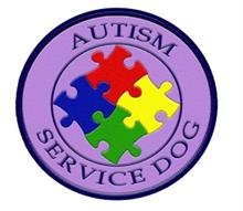 Autism Service Dog Patch
