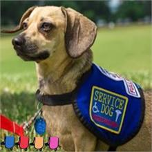 BLUE SERVICE DOG VEST FOR SMALL DOGS