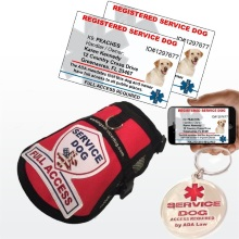 deluxe service dog kit