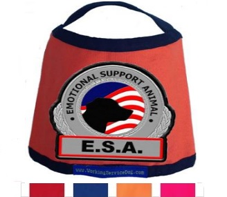 Emotional Support Animal Small Dog Vest